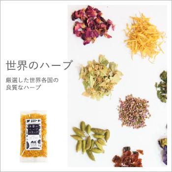南阿蘇TEA HOUSE【世界のハーブシリーズ】