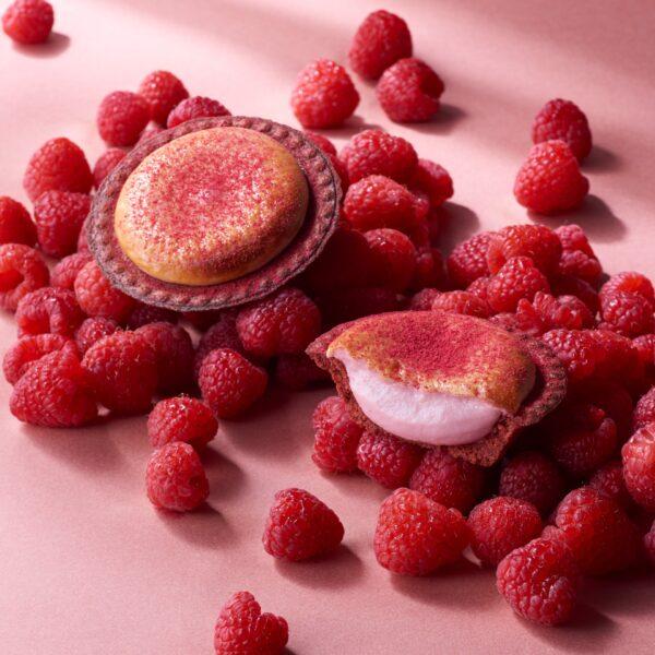 【BAKE】期間限定!華やかな『芳醇フランボワーズチーズタルト』登場中★
