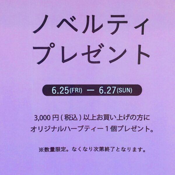 南阿蘇TEA HOUSE【ノベルティプレゼント】