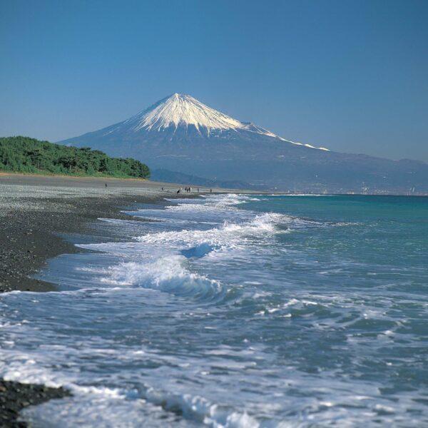 熊本から静岡へ