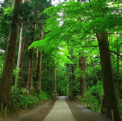 プロが選ぶ日本のホテル・旅館100選と5つ星の宿に泊まる 東北3県周遊4日間➁